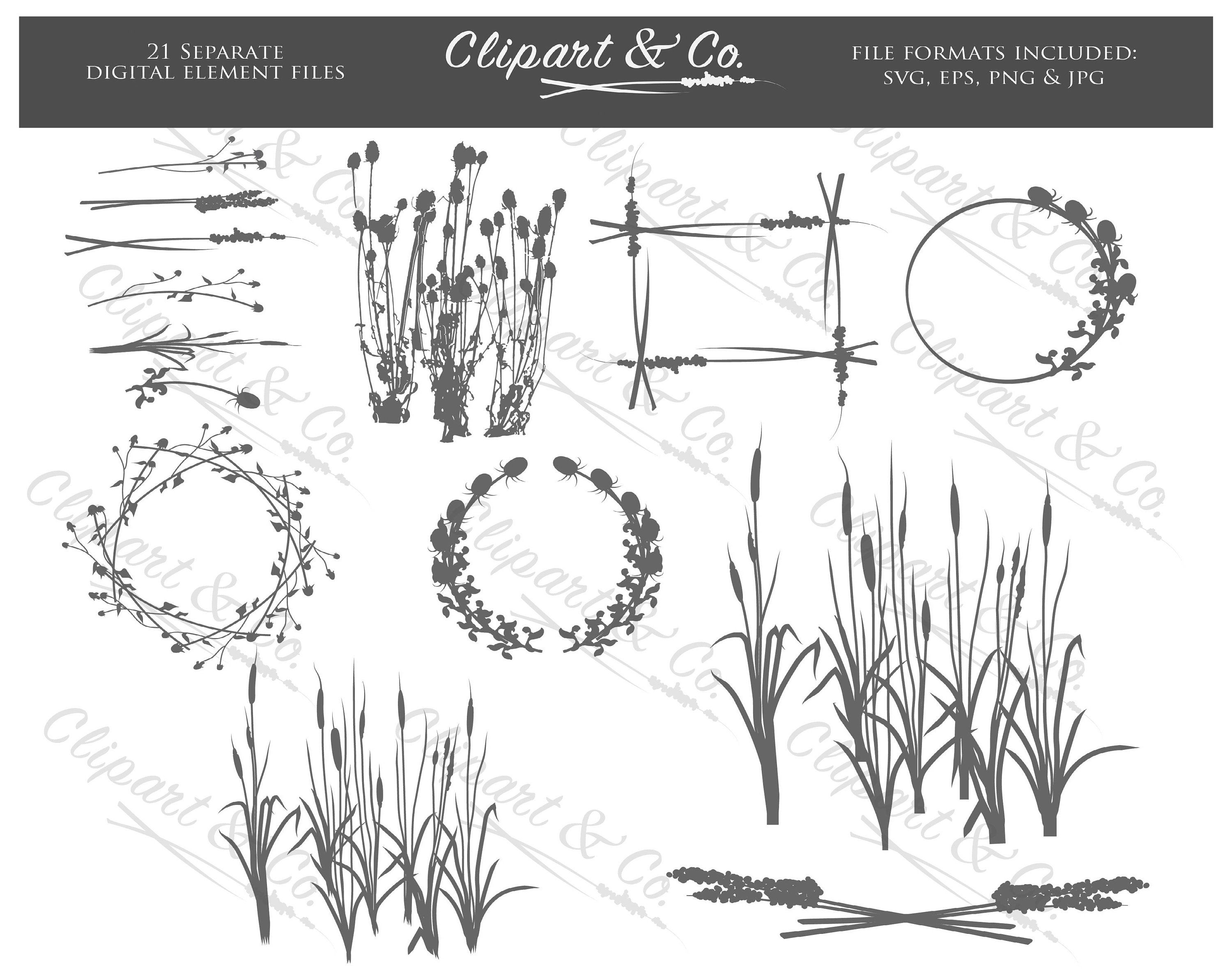Botanical Clipart Digital Stamps Design Elements, 21 Vector.