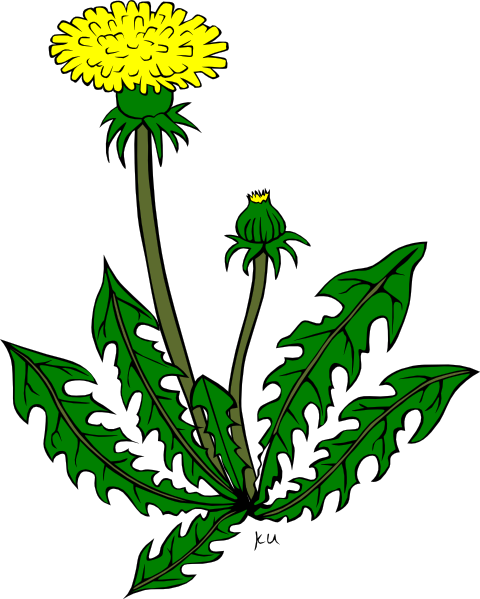 Weeds in crops clipart clipart images gallery for free.
