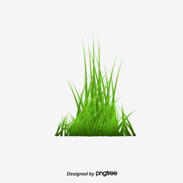 Weeds Png, Vector, PSD, and Clipart With Transparent Background for.