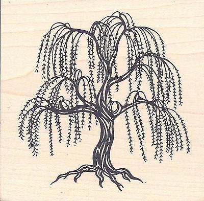 primative Weeping Willow Tree Drawings.