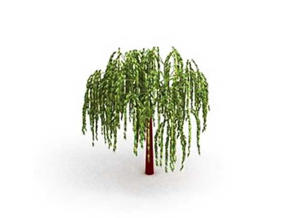 Willow Tree Clip Art. Clip Art. Ourcommunitymedia Free Clip Art Images.