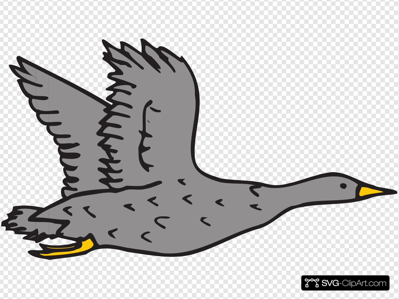 Gray Bird Clip art, Icon and SVG.
