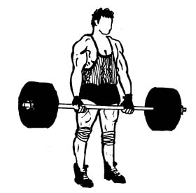 Weight lifting clip art.