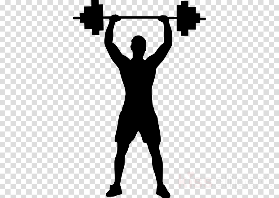 bodybuilding standing weightlifting muscle barbell clipart.