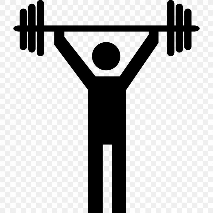 Weight Training Olympic Weightlifting Physical Exercise Clip.