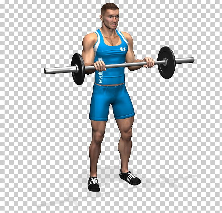 Biceps Curl Barbell Bench Forearm PNG, Clipart, Abdomen, Arm.