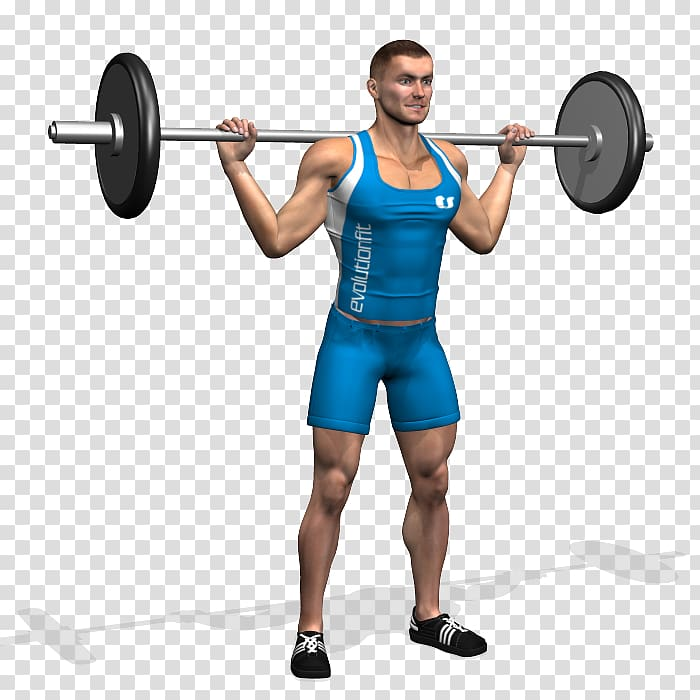 Barbell Dumbbell Bench Weight training Squat, barbell.