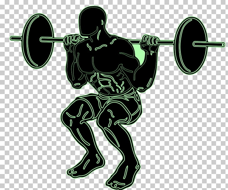 Squat Exercise Weight training Olympic weightlifting , squat.