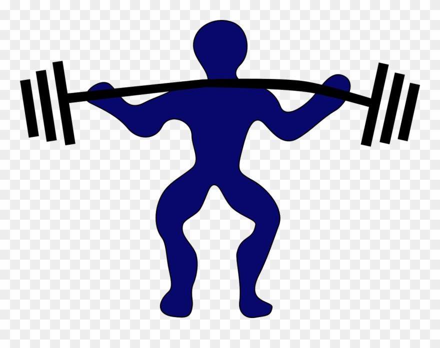 Weight Lifter Weight Fitness.
