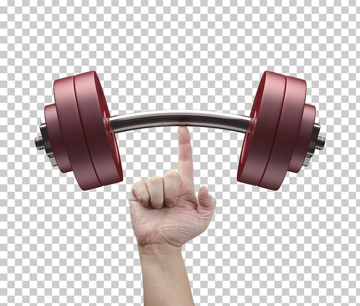Barbell Weight Training Exercise Equipment Fitness Centre.