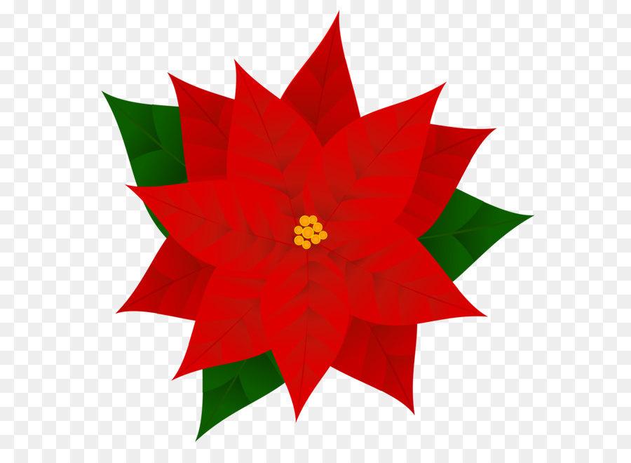 Weihnachtsstern Weihnachten Clip art.