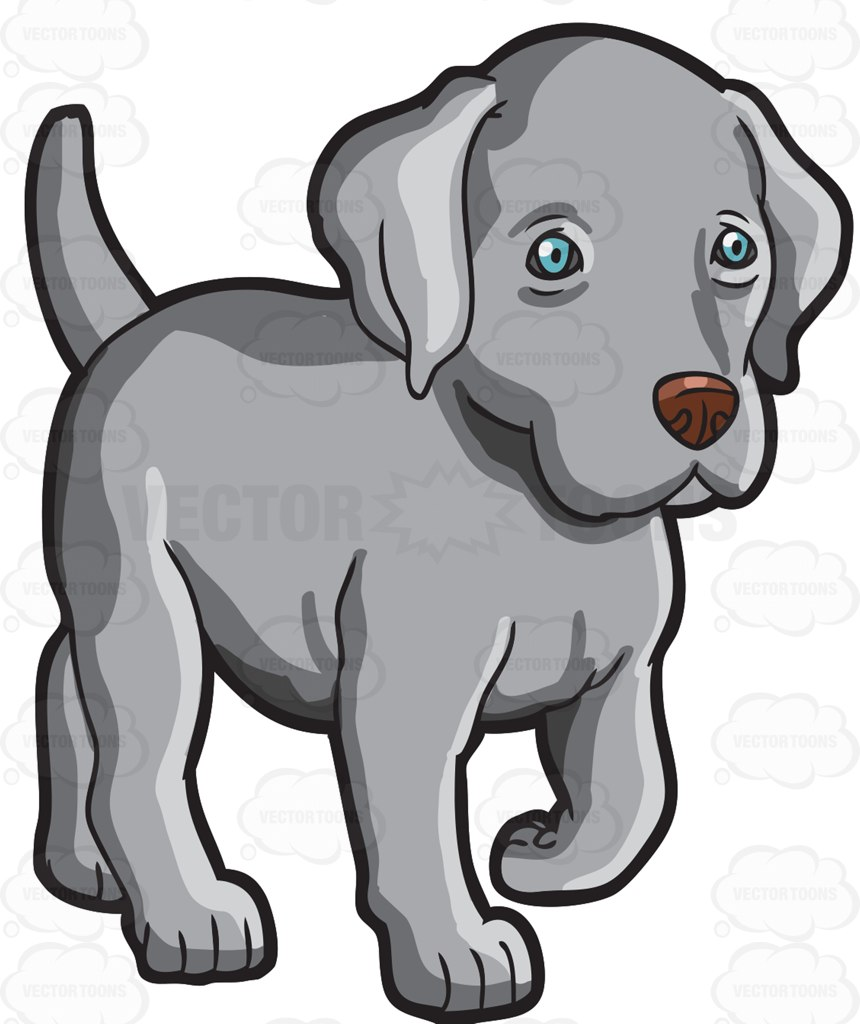 A Cute Little Weimaraner Puppy Cartoon Clipart.