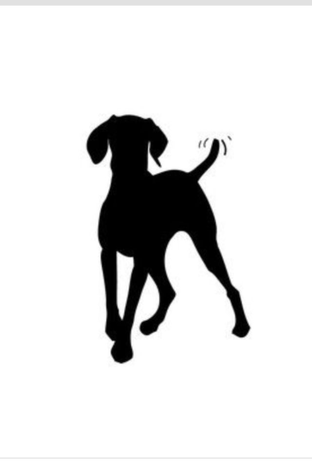 I love this silhouette of a weim.