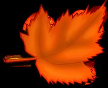Blätter cliparts, clipart.