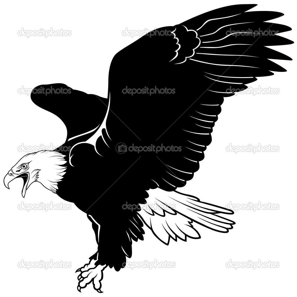 Weißkopfseeadler — Stockvektor © dero2010 #3263923.