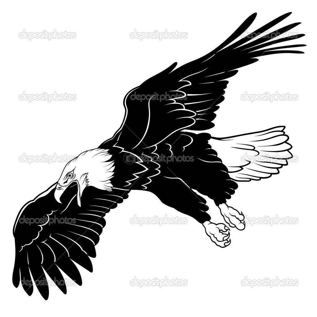 Fliegender Weißkopfseeadler — Stockvektor © dero2010 #3271862.