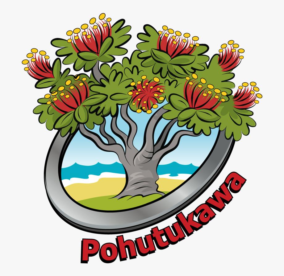 Welcome To The Pohutukawa Team.