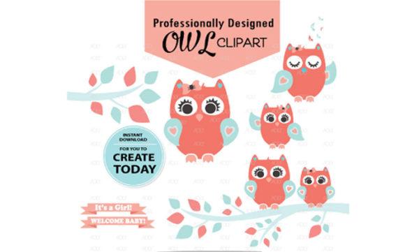 Girl Owl Clipart in Coral Aqua +3Pattern.