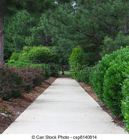 Stock Photo of A sidewalk through a well maintained manicured and.