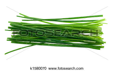 Stock Photography of fresh chives herb k1580070.