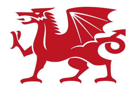 Dragon Graphic.