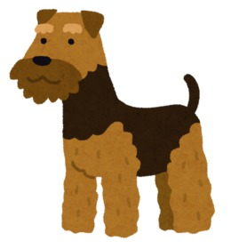 Download welsh terrier clipart Welsh Terrier Airedale.