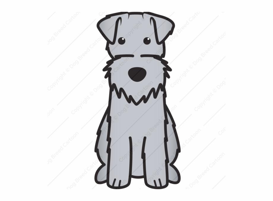Irish Terrier Border Terrier Yorkshire Terrier Welsh Terrier.