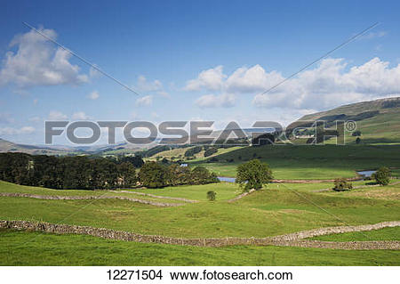 Stock Photo of Looking up Wensleydale near Hawes in the Yorkshire.