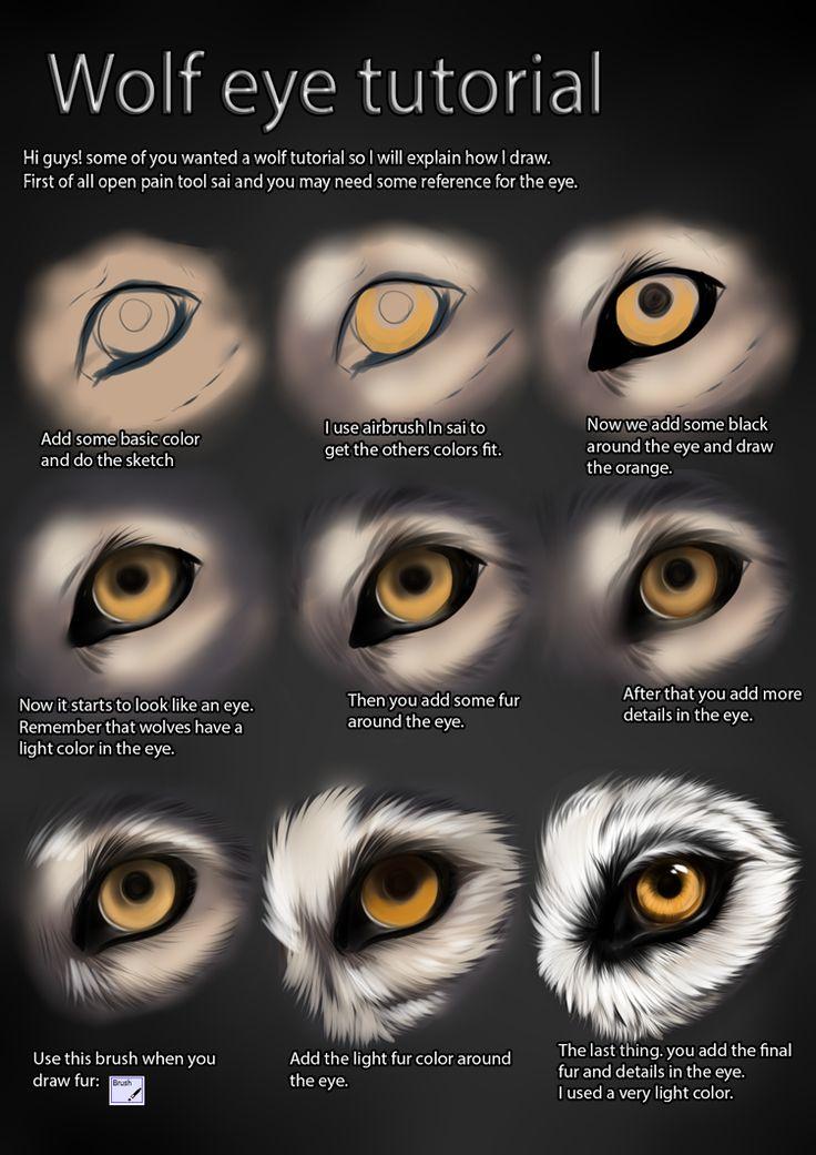 25+ best ideas about Wolf Eyes on Pinterest.