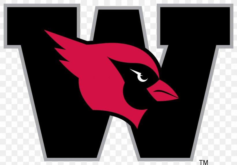 Wesleyan University Wesleyan Cardinals Football Western New.
