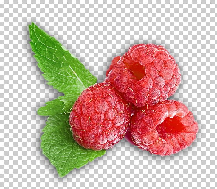 West Indian Raspberry Loganberry Boysenberry Tayberry PNG.