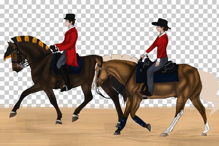 Horse Equestrian Western riding English riding Saddle.