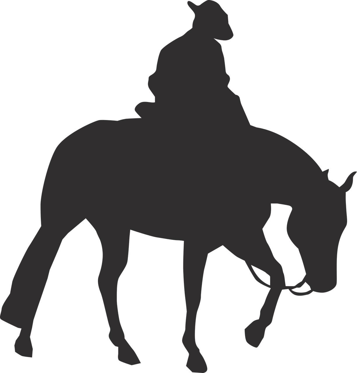Rocky Mountain Horse Pony Vector graphics Equestrian Western.