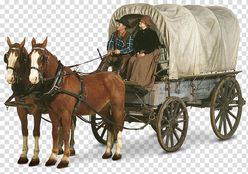 Man and woman riding horse carriage, Oregon Trail Western.