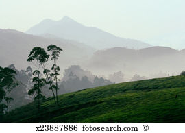 Western ghats Stock Photo Images. 459 western ghats royalty free.