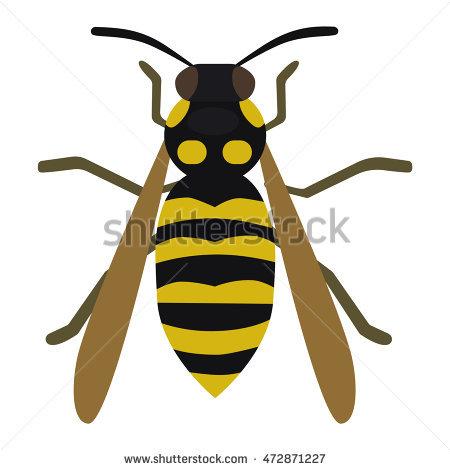 Western Honey Bee Stock Photos, Royalty.