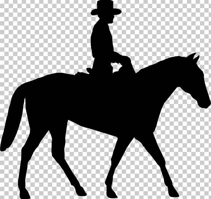 Horse Equestrian Bucking English Riding PNG, Clipart.