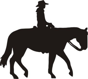 western pleasure horse with rider.