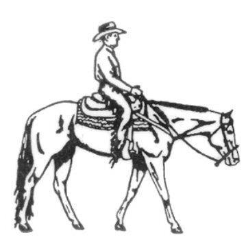 24+ Western Pleasure Horse Clipart.
