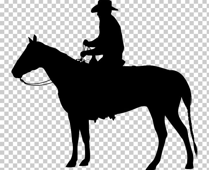 Horse Equestrian Western Pleasure PNG, Clipart, Animals.
