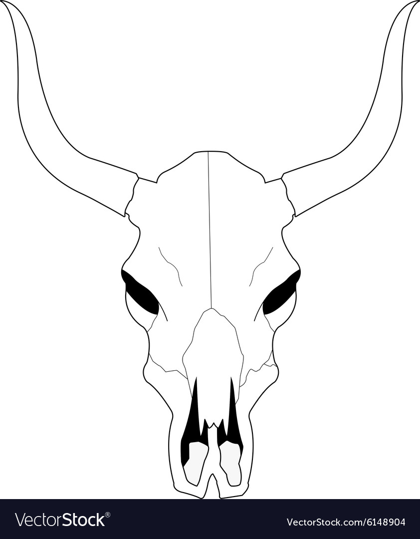 Cow skull with horns Contour.