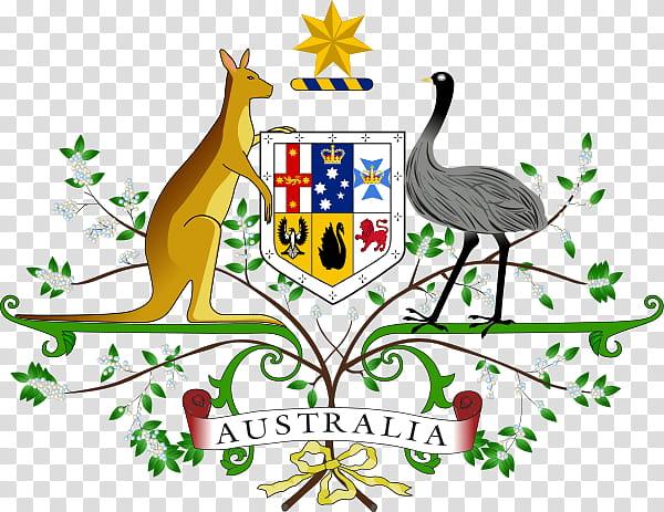 Kangaroo, Coat Of Arms Of Australia, National Symbols Of.