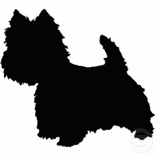 West Highland White Terrier Silhouette Standing Photo.