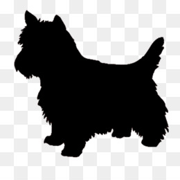 Westie PNG and Westie Transparent Clipart Free Download..