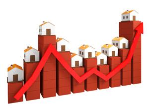 Westpac economist says housing market activity is picking up.