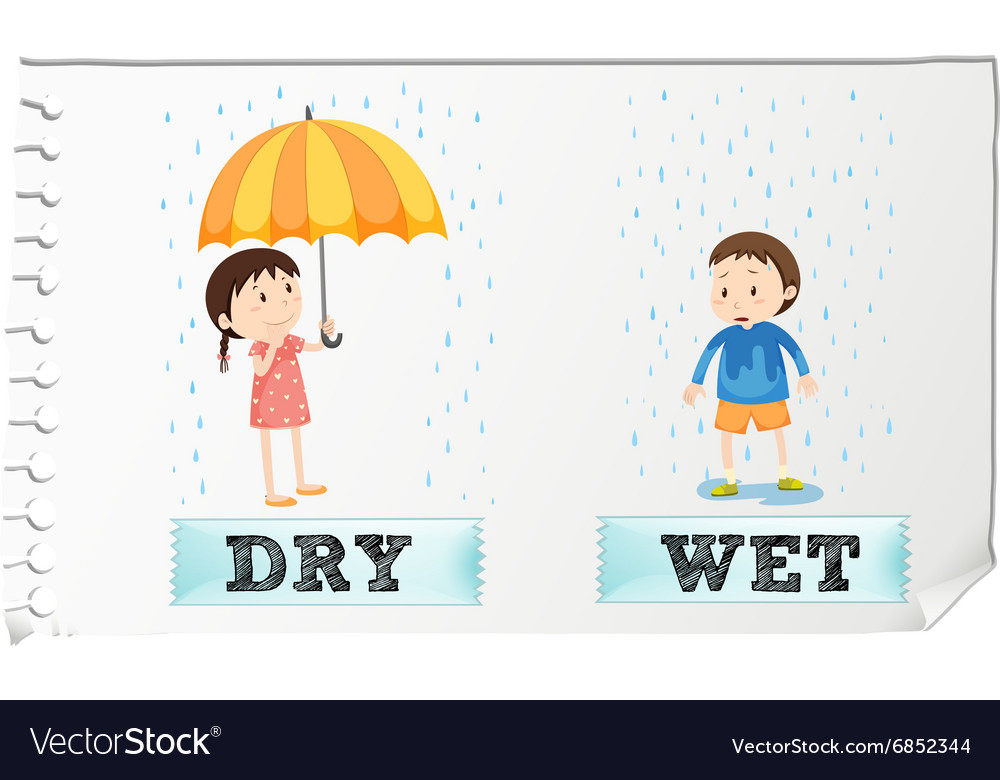 Opposite adjectives dry and wet vector image.