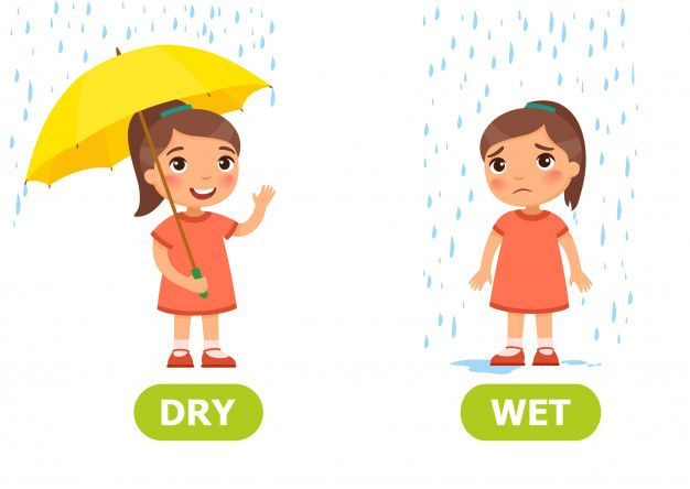 Illustration of opposites dry and wet. Card for teaching aid.