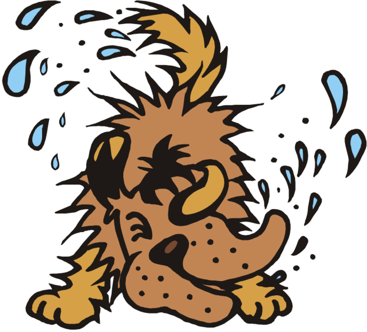 Science Looks at Why and How Wet Dogs Shake.