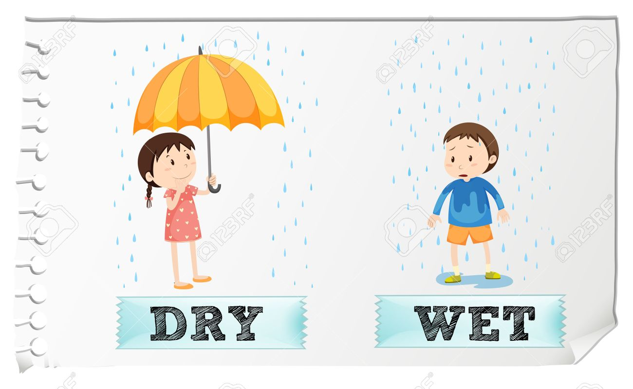 Opposite adjectives dry and wet illustration.