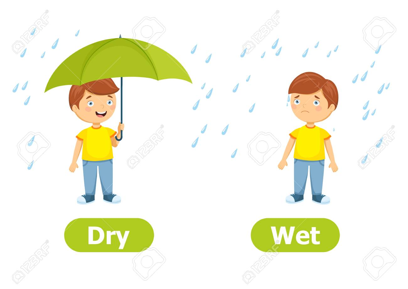 Vector antonyms and opposites.Dry and Wet. Cartoon characters...